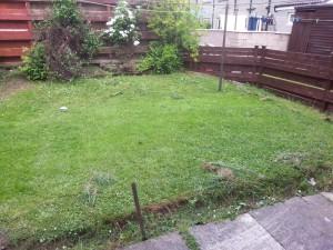 Back Garden, Balunie Terrace
