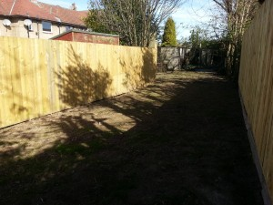 Garden, with new grass coming through, Forres Crescent